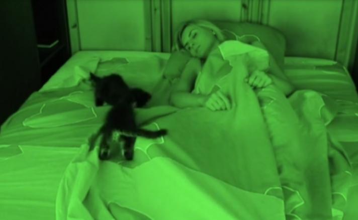 Εκείνη κοιμάται και δίπλα της γίνεται… ΧΑΜΟΣ! (vid)