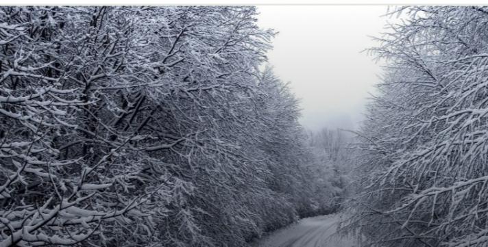 Προβλήματα λόγω κακοκαιρίας: Το χιόνι έκλεισε δρόμους και σχολεία (βίντεο)