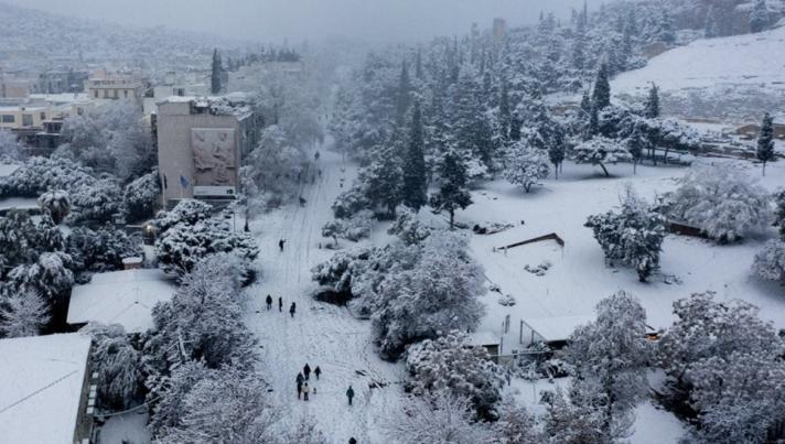 Meteo-«Μήδεια»: Το «βαρύ χιόνι» τσάκισε τα δένδρα στην Αττική