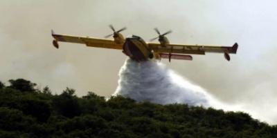 Υπό έλεγχο η μεγάλη φωτιά στο Πεταλίδι